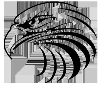Getekende afbeelding van een haviksoog